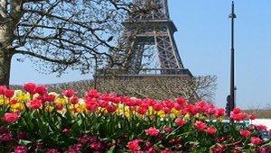 Французская весна в Харькове
