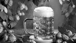Не выпить ли нам пинту пива?
